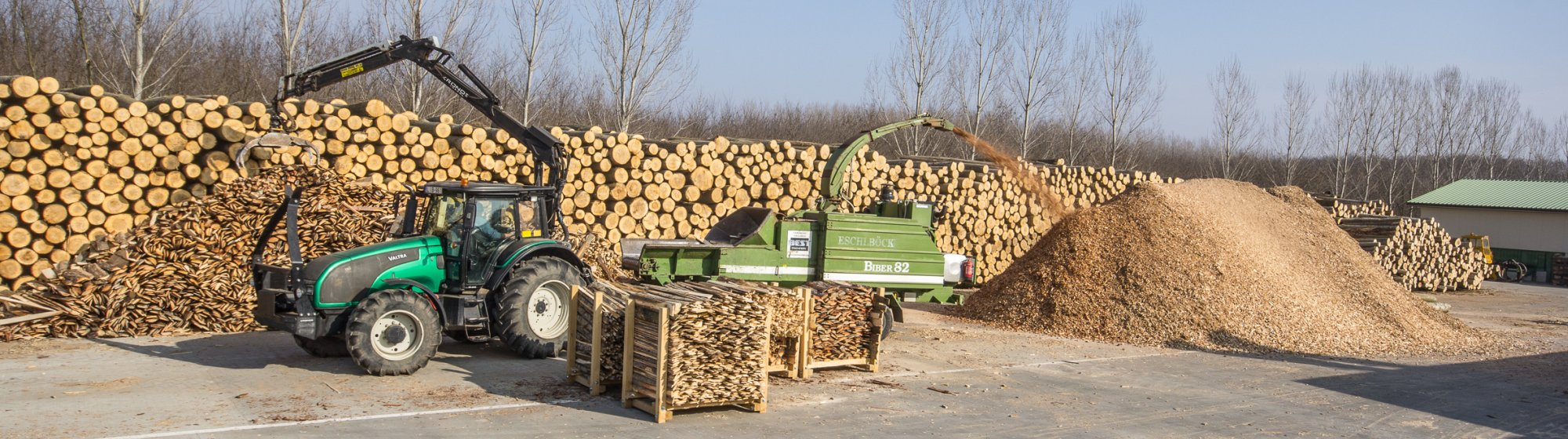 Preparation of wood chips